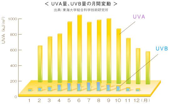 年間の紫外線の量