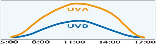 1日の紫外線の量