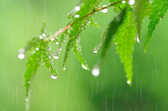 時期 関東 梅雨明け 【2021年】関東甲信地方の梅雨入りと梅雨明けの時期を予想!